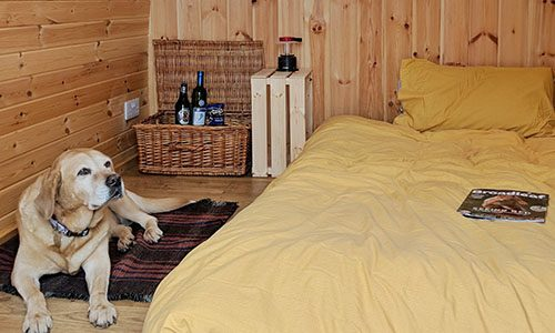 Dog friendly glamping pod Kingfisher