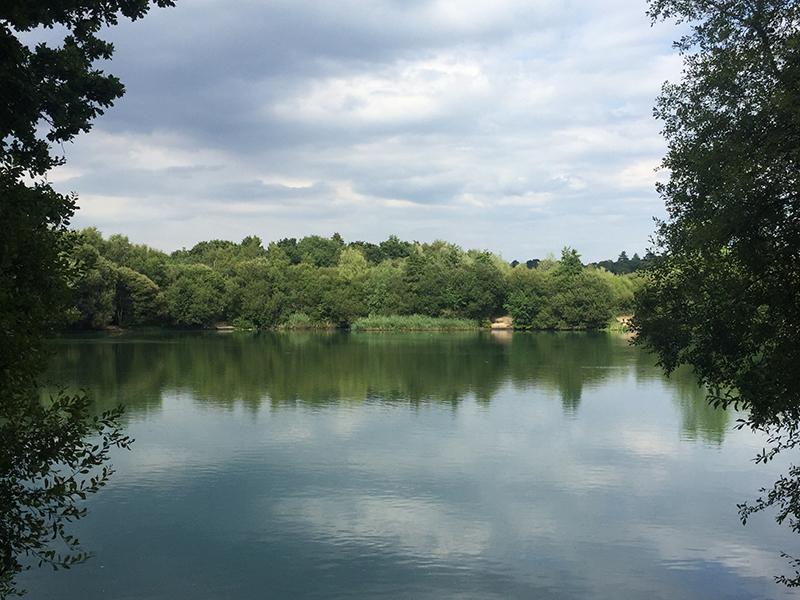 Poulner Lakes, Ringwood